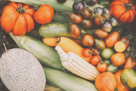 vegetable_save3