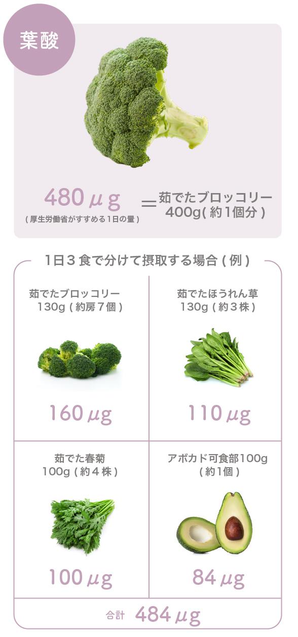 葉酸 食材